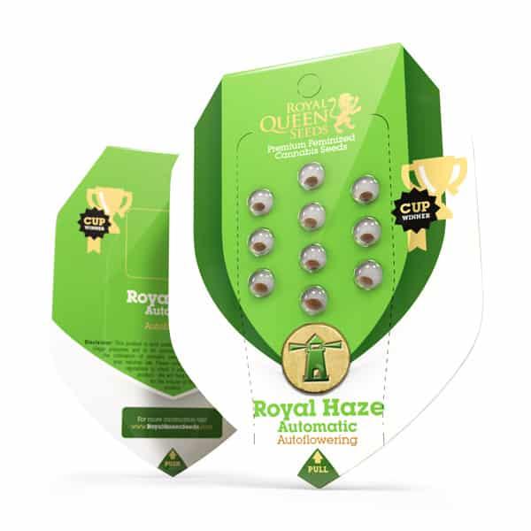 Royal Haze Automatic Cannabis Seeds