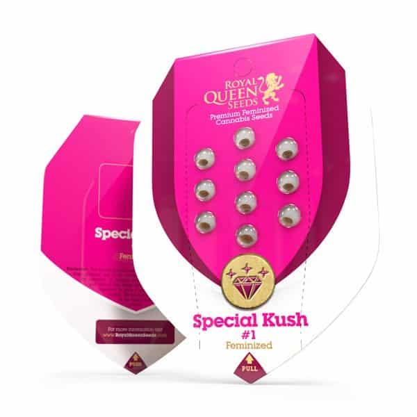 Special Kush 1 Feminized Cannabis Seeds from Royal Queen Seeds