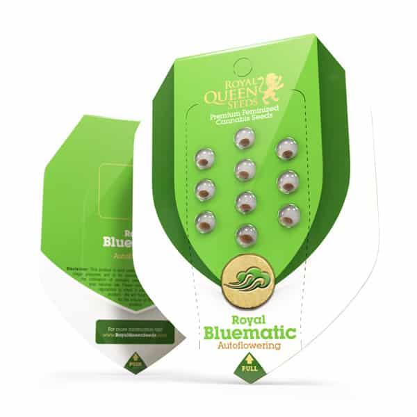 Royal Bluematic Autoflowering Cannabis Seeds