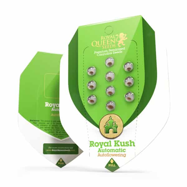 Buy Royal Kush Automatic Cannabis Seeds from Royal Queen Seeds online at HollandsHigh
