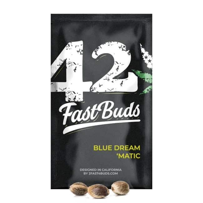 blue dream matic seeds