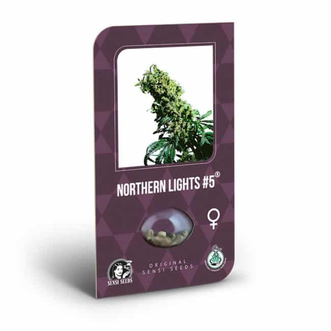 Buy Northern Lights #5 X Haze Feminized Cannabis Seeds from Sensi Seeds online at HollandsHigh! Fast & Discrete worldwide shipping! Check out all our Sensi strains!