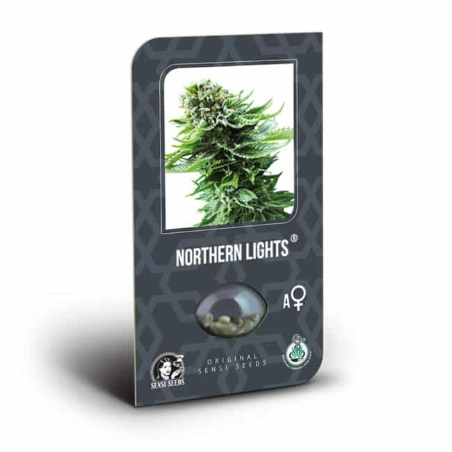 Buy Northern Lights Automatic Feminized Autoflowering Cannabis Seeds from Sensi Seeds online at HollandsHigh! Fast & Discrete worldwide shipping!