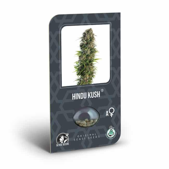Buy Hindu Kush Automatic Feminized Autoflowering Cannabis Seeds from Sensi Seeds online at HollandsHigh! Fast & Discrete worldwide shipping!