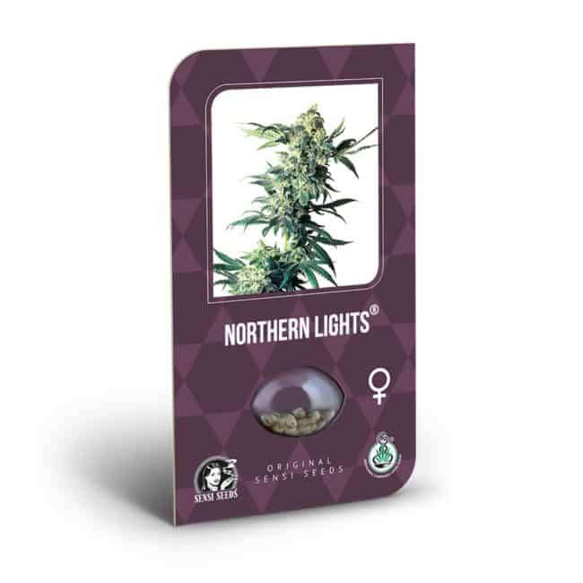Buy Northern Lights Feminized Cannabis Seeds from Sensi Seeds online at HollandsHigh! Fast & Discrete worldwide shipping! Check out all our Sensi strains!