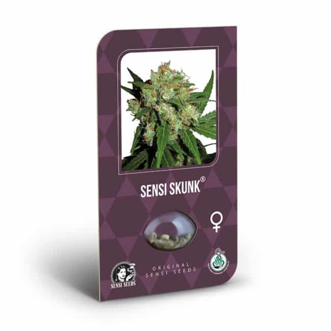 Buy Sensi Skunk Feminized Cannabis Seeds from Sensi Seeds online at HollandsHigh! Fast & Discrete worldwide shipping! Check out all our Sensi strains!