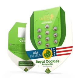 Royal Cookies Automatic Cannabis Seeds