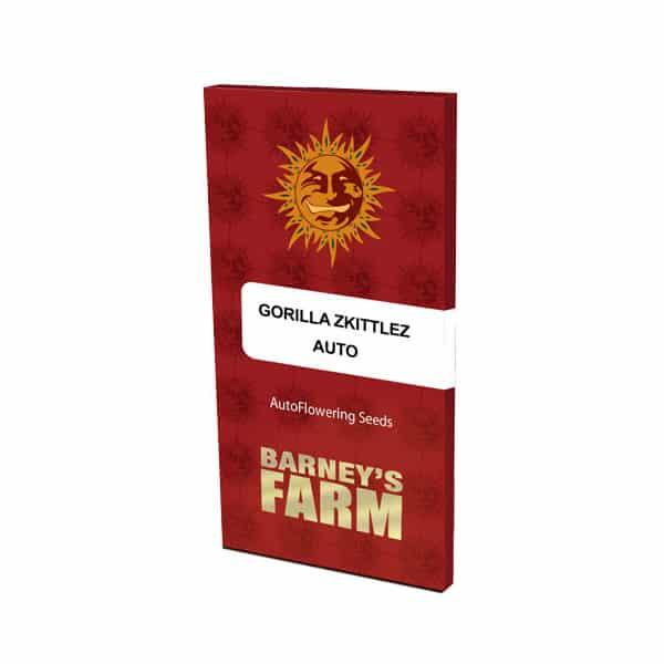 Buy Gorilla Zkittlez Auto Cannabis Seeds from Barneys Farm at HollandsHigh