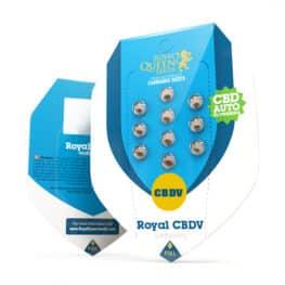 Royal CBDV Automatic Cannabis Seeds
