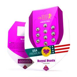 Royal Runtz Feminized Cannabis Seeds