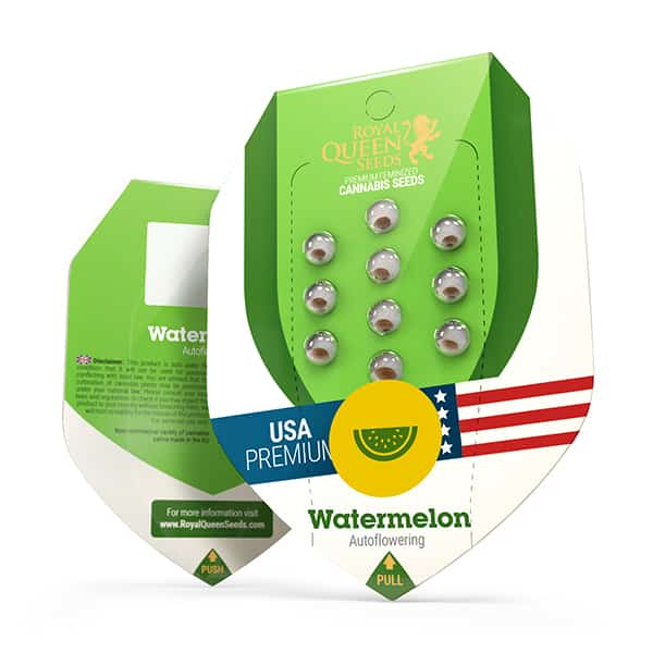Watermelon Automatic Cannabis Seeds