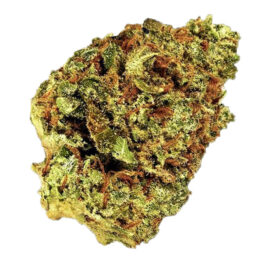 Buy Watermelon Zkittlez Autoflowering cannabis seeds by Barneys Farm at HollandsHigh