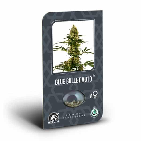 Blue Bullet Autoflowering Cannabis Seeds