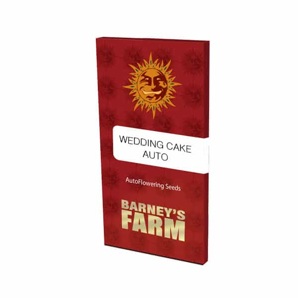 Buy Wedding Cake Autoflowering cannabis seeds by Barneys Farm at HollandsHigh