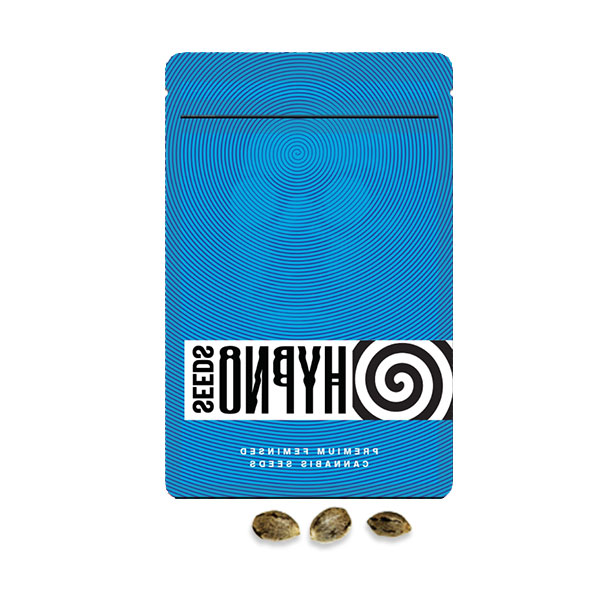dr hypno seeds
