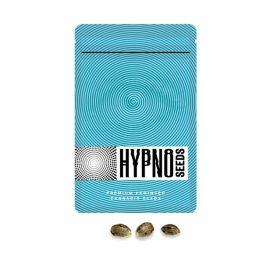 ice eyes hypno seeds