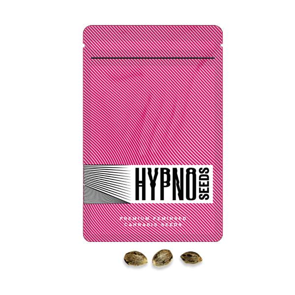 juicy pussy hypno seeds